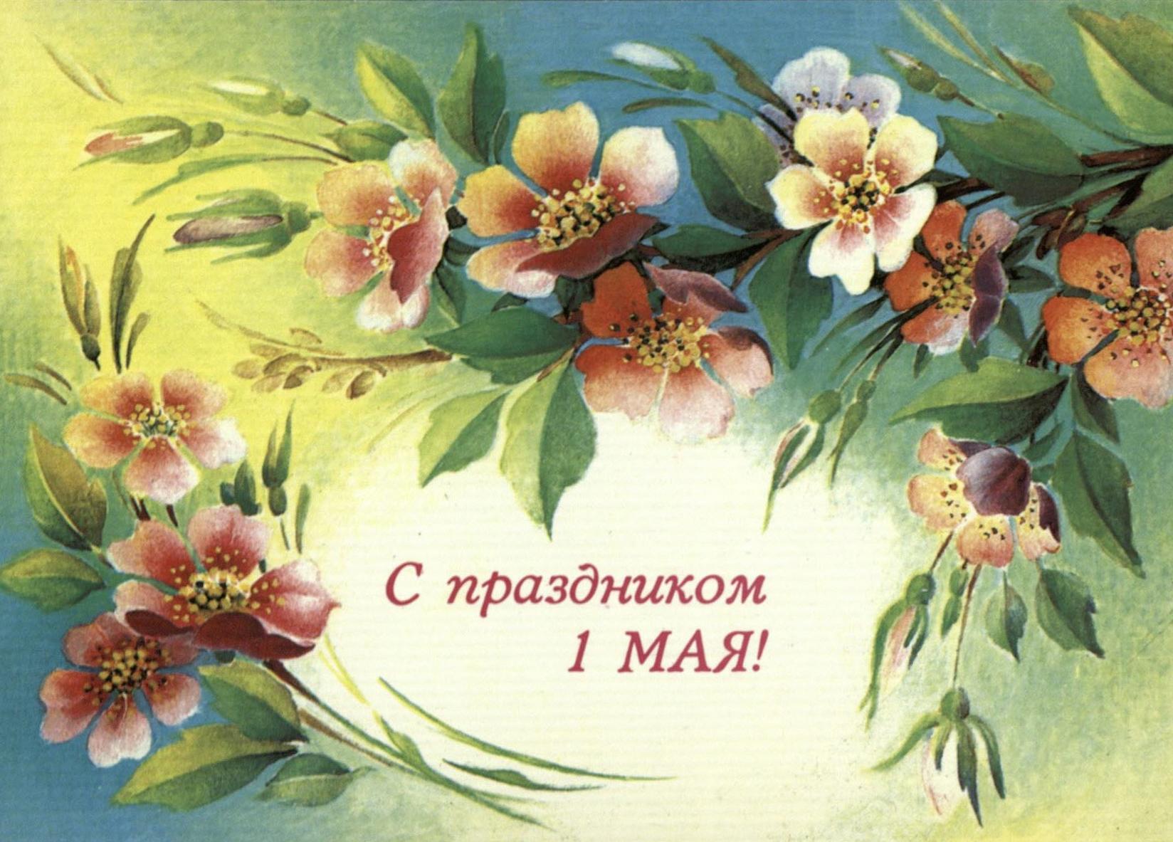 Поздравления прикольные с майскими праздниками